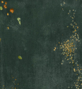 Whistler Nocturne detail black & gold the falling rocket 1875