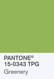 pantone-coy-2017-15-0343-chip